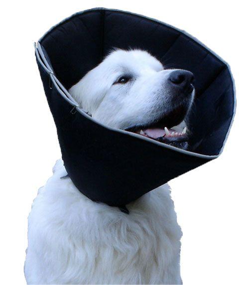 Ochranný límec pro psy 35,5-56cm L I love pets