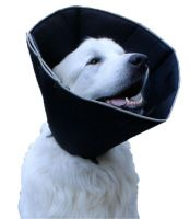Ochranný límec pro psy 53-64cm XL