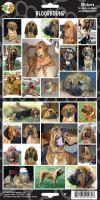 Samolepky bloodhound