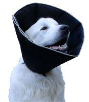 Ochranný límec pro psy 20-26cm S